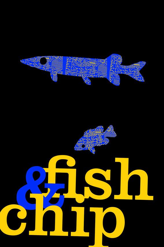 fish&;chip