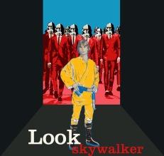 lookskywalker