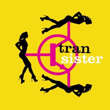 transister2